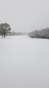 まさかの積雪…☃