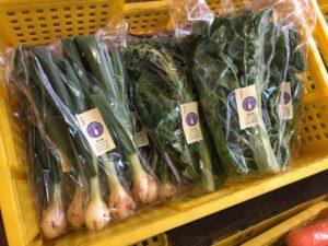 丹波産のめずらしい野菜入荷しました【かつお菜】【葉玉ねぎ】