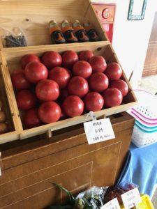丹波産の夏野菜◆ぞくぞく入荷してます